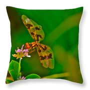 Dragonfly And Flower Throw Pillow