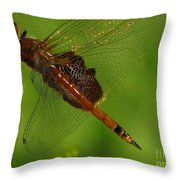 Dragonfly Art 2 Throw Pillow