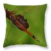 Dragonfly Art 2 Throw Pillow