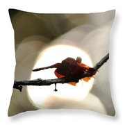 Dragonfly Bathing In Sunset Throw Pillow
