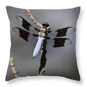Dragonfly Common Whitetail Throw Pillow