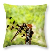 Dragonfly Eating Breakfast Throw Pillow