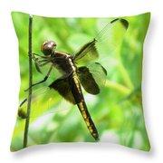 Dragonfly Female Widow Skimmer Throw Pillow