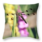 Dragonfly Gladiolus Throw Pillow