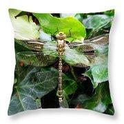 Dragonfly In An English Garden Throw Pillow