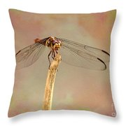 Dragonfly In Fantasy Land Throw Pillow