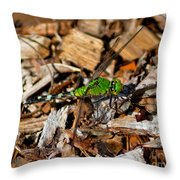 Dragonfly In Mulch Throw Pillow