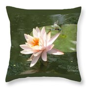 Dragonfly Landing Throw Pillow