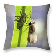 Dragonfly Metamorphosis - Fourth In Series Throw Pillow