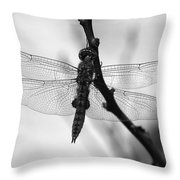 Dragonfly Mosaic Throw Pillow