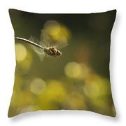 Dragonfly No 2 Throw Pillow