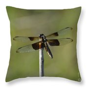 Dragonfly On A Stick Throw Pillow