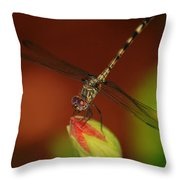 Dragonfly On Hibiscus Throw Pillow