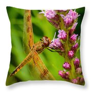 Dragonfly On Liatris Throw Pillow