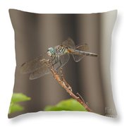 Dragonfly Profile Throw Pillow