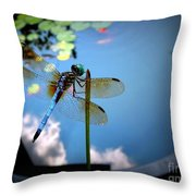 Dragonfly Reflecting On A Beautiful Day Throw Pillow