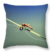 Dragonfly Resting Station Throw Pillow