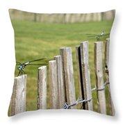 Dragonfly Runway Throw Pillow
