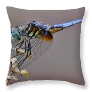 Dragonfly Stance Throw Pillow