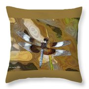 Dragonfly Waiting For A Fly Throw Pillow
