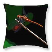 Dragonfly Waits Throw Pillow