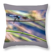 Dragonfly Walking A Tightrope Throw Pillow