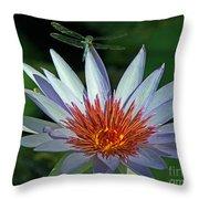 Dragonlily Throw Pillow