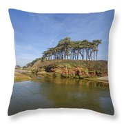 Dragons Back Budleigh Salterton Throw Pillow