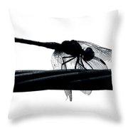 Dragons Silhouette Throw Pillow