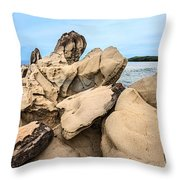 Dragon's Teeth Closeup Throw Pillow