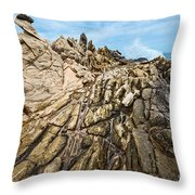 Dragon's Teeth Throw Pillow