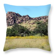 Dragoon Mountains Throw Pillow