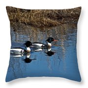 Drakes A Pair Throw Pillow by Skip Willits