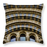 Drama Throw Pillow by Heather Applegate