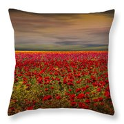 Drama Over The Flower Fields Throw Pillow