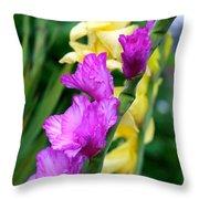 Dramatic Gladiolus Throw Pillow