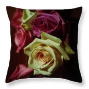Dramatic Purple And Yellow Roses Throw Pillow