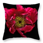 Dramatic Red Peony Flower Throw Pillow
