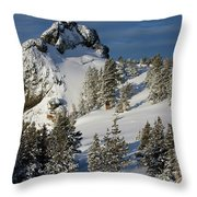 Dramatic View Of The Sprawling Throw Pillow