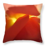 Glowing Orange Rose 2 Throw Pillow