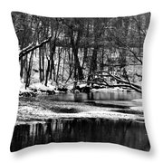 Dramatic Waterway Throw Pillow
