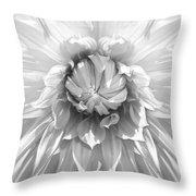 Dramatic White Dahlia Flower Monochrome Throw Pillow