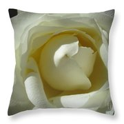 Dramatic White Rose 2 Throw Pillow