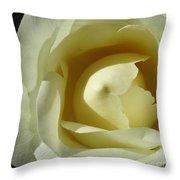 Dramatic White Rose 3 Throw Pillow
