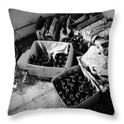 Drank In Spins Throw Pillow