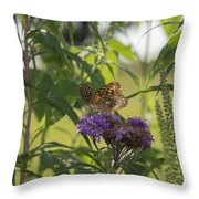 Draped In Spangled Glory Throw Pillow