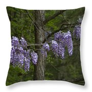 Draping Wisteria Frutescens Wildflower Vines Throw Pillow