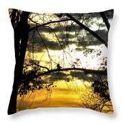 Dream At Dusk Throw Pillow