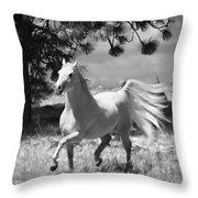 Dream Horse Throw Pillow