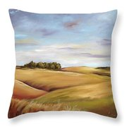 Dream Land Throw Pillow by Paula Marsh